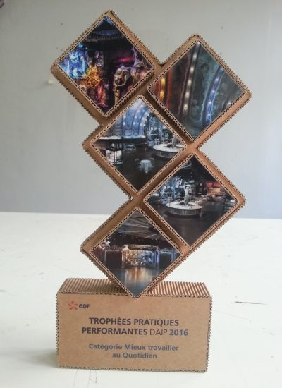 sophietais-carton-comande-quartpoil-trophe (2)